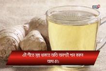 Invideo: শীতে সুস্থ থাকতে অবশ্যই পান করুন আদা চা, জেনে নিন উপকারিতা