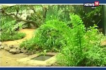 আলিপুর চিড়িয়াখানায় আসছে অ্যানাকোন্ডা, তৈরি হচ্ছে 'ছোট্ট আমাজন'
