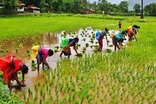 Budget 2019: রিপোর্ট অনুযায়ী কৃষকরা বছরে পেতে পারেন 8000 টাকা