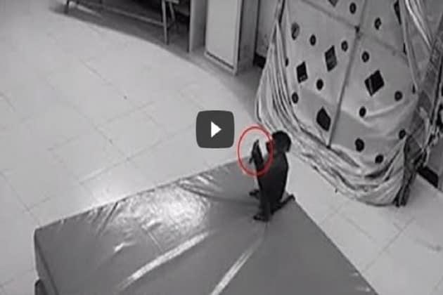 Viral Video : অনলাইনে অর্ডার দিচ্ছে বাঁদর! দেখে নিন