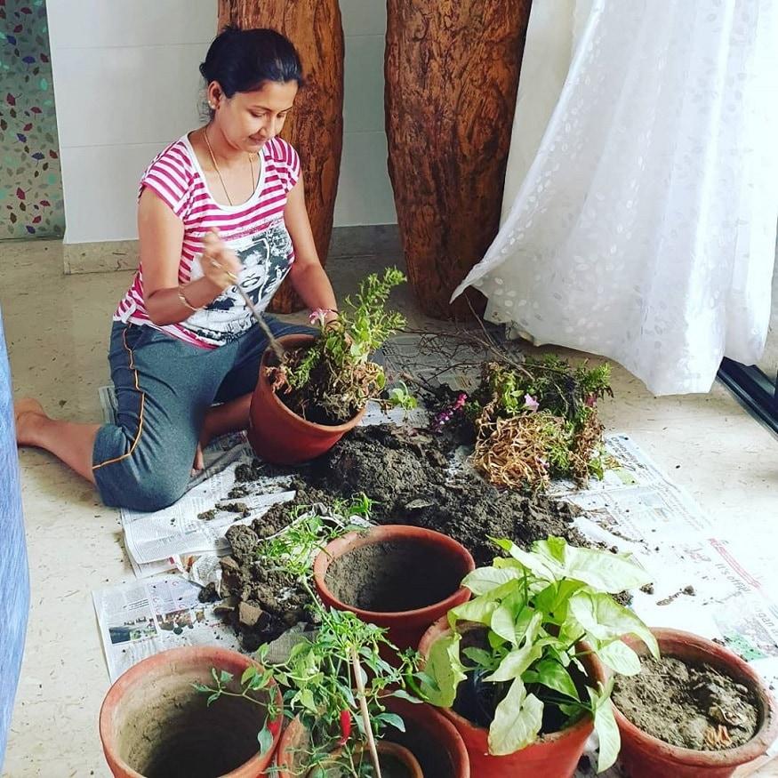 রচনা গাছ লাগাতে এবং রোজ পরিচর্যা করতে ভালবাসেন। এ কথা ইনস্টাগ্রামে লিখেছেন তিনি।photo source Instagram