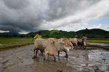 আগামী দু'ঘণ্টায় ধেয়ে আসছে প্রবল ঝড়বৃষ্টি, ফের গোটা দক্ষিণবঙ্গ ভাসবে বৃষ্টিতে