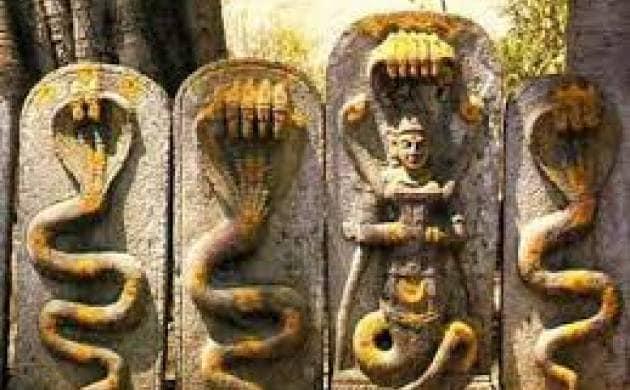 নাগপঞ্চমী এক অতি জনপ্রিয় উৎসব। বিশেষত মধ্যভারতে, নাগ এক সর্বজনমান্য, সর্বজন বিদিত দেবতা। নাগপুরের নামকরণই এর প্রমাণ। নাগপঞ্চমীর দিন এখানে নাগোবা মন্দিরে এদিন বিশেষ পূজা হয়। গোটা উত্তর ভারত জুড়ে পালিত হয় নাগপঞ্চমী। পঞ্চমী হল মূল পূজার দিন। দক্ষিণ ভারতে পূজা শুরু হয় অমাবস্যার দিন।