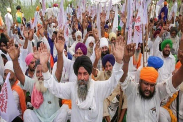 Farmers' Protest  কৃষক আন্দোলনের সমাধানসূত্র খুঁজতে কমিটি গড়া হোক, রায় শীর্ষ আদালতের