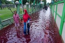 নৃশংস হত্যালীলা, নাকি অন্য কিছু? লাল জলে ভাসছে ইন্দোনেশিয়ার গ্রাম