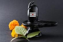 Mahashivratri 2021: শুরু হয়েছে সেই মহেন্দ্রক্ষণ, সন্ধের পরে মহাদেবের এই নাম স্মরণে খুশিতে ভাসবে জীবন