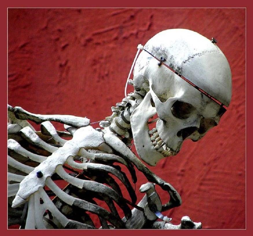 ফরেন্সিক টিম এবার ওই প্রাপ্ত অবশিষ্ট ভগ্নাংশ পরীক্ষা করে দেখছে৷ পুলিশ আধিকারিক বলেছেন , ''পুলিশ এই মামলার তদন্তও শুরু করে দিয়েছে৷ ''(Photo Courtesy- wikicommons) -Representative Image