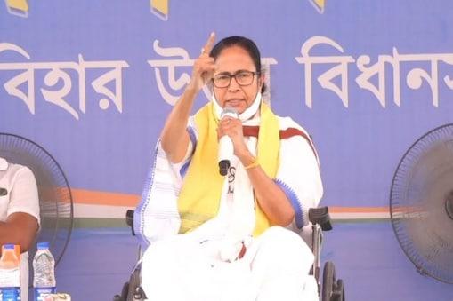 Mamata Banerjee: প্রথম তিন দফায় ২৫-৩০ আসন পেতে পারে বিজেপি, দাবি মমতার