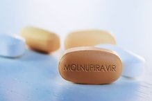 Corona Oral Drug: এক ওষুধেই বাজিমাৎ! মাত্র ২৪ ঘণ্টাতেই করোনা সারাবে নতুন আবিষ্কার 'মোলনুপিরাভির'