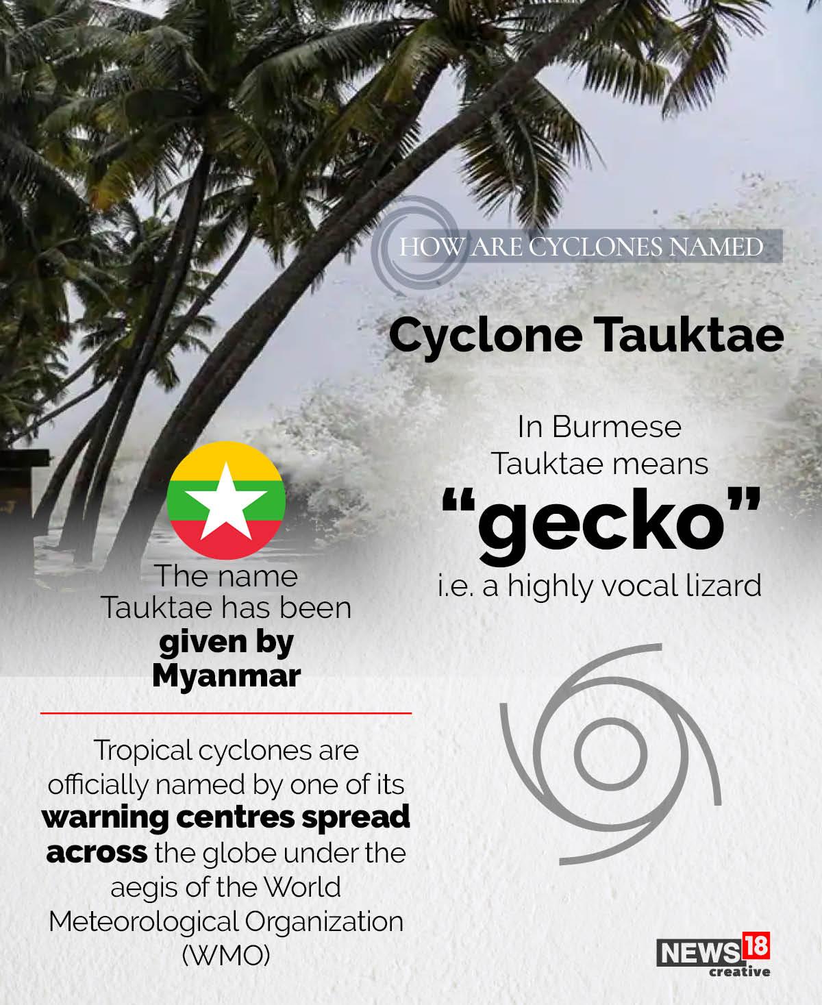 Cyclone Tauktae নামটি মায়ানমারের দেওয়া। মায়ানমার শব্দ 'গেকো' থেকেই এসেছে তওতে নামটি। যার মানে উচ্চস্বর যুক্ত টিকটিকি জাতীয় প্রাণী (highly vocal lizard)।