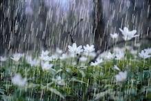 Latest Weather Forecast : গাঙ্গেয় পশ্চিমবঙ্গে ঝড়বৃষ্টির দাপটের পূর্বাভাস, একনজরে আবহাওয়ার রিপোর্ট...