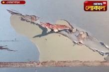 নোয়াপাড়ার পিনকল মোড়ে দুষ্কৃতীদের বোমাবাজি, আতঙ্ক এলাকায়