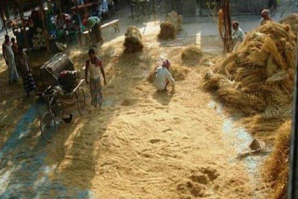 কৃষক বাজারগুলিকে কৃষি শিল্প তালুকের রূপ,উদ্যোগ সরকারের,বদলাবে আর্থসামজিক চিত্র