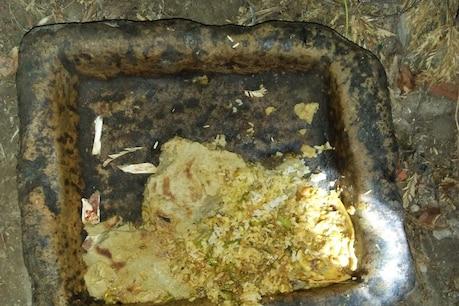 સુરેન્દ્રનગર: પાટડી બજાણામાં 15 ગાયોના ઝેરી પદાર્થ ખાવાથી મોત