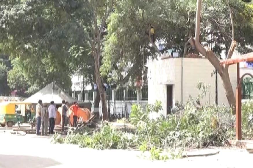 એકતરફ દેશમાં વક્ષો વાવોનું સૂત્ર ચાલી રહ્યું છે ત્યારે બીજી બાજુ થોડા કલાકોના કાર્યક્રમ માટે મોટા મોટા વૃક્ષોનું નિકંદન થઇ રહ્યું છે ત્યારે આ કેટલું યોગ્ય છે?