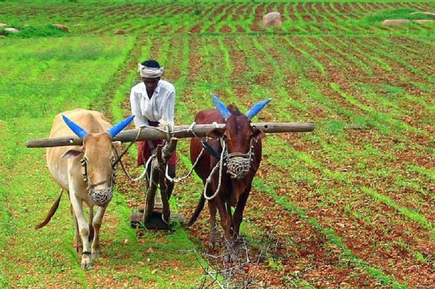 ઉચ્ચ પદના સૂત્રો અનુસાર, સોમવારે મંત્રિમંડળની બેઠક થવાની છે. નાના-સિમાંત ખેડૂતોની આવક અચતની સમસ્યાના સમાધાનના ઉપાયોને લઈ કૃષિ મંત્રાલય એક પ્રસ્તાવ બેઠકનો એજન્ડો બનાવી રહી છે. સૂત્રો અનુસાર, કૃષિ મંત્રાલયે રાજ્યોની સમસ્યાઓને દૂર કરવા માટે અલ્પાવધુ અને દીર્ઘકાલિન બંને સમાધાન પ્રદાન કરવા માટે કેટલાએ વિકલ્પોની ભલામણ કરી છે.