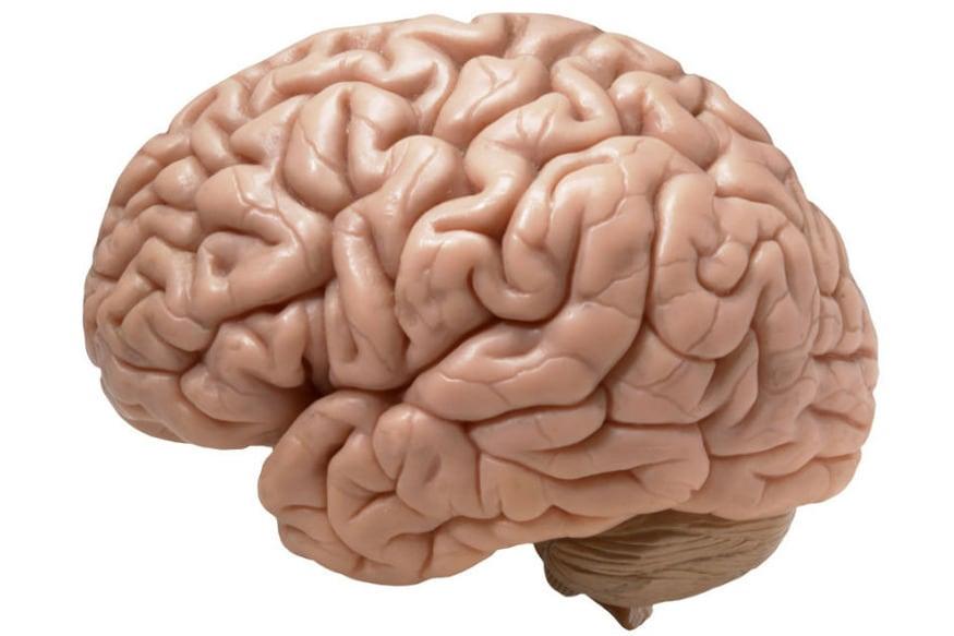 hot cognition સ્ટ્રેસફુલ સિચ્યુએશનમાં શરૂ થાય છે. જ્યારે મગજને સ્ટ્રેસ રિસ્પોન્સ મળે છે તો વર્કિંગ મેમરી કામ કરવાનું બંધ કરી દે છે. રિકોલ મેકેનિઝમ્સમાં પણ અડચણ ઊભી થાય છે. જ્યારે મગજમાં આ તમામ પ્રોસેસની ક્રિયાઓ એક સાથે થાય છે તો તેનાથી માઇન્ડ બ્લોક સિચ્યુએશન ક્રિએટ થાય છે. આ દરમિયાન લોજિકલ કોગનિટિવ એક્ટિીવિટી માટે કંઈ પણ ગ્રહણ કરવું મુશ્કેલ થઈ જાય છે.