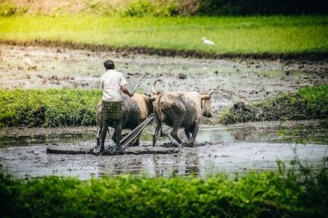 આવા ખેડુતોને નહીં મળે 6000 રુપિયાની સહાય, ક્યાંક તમે તો નથીને આમા?