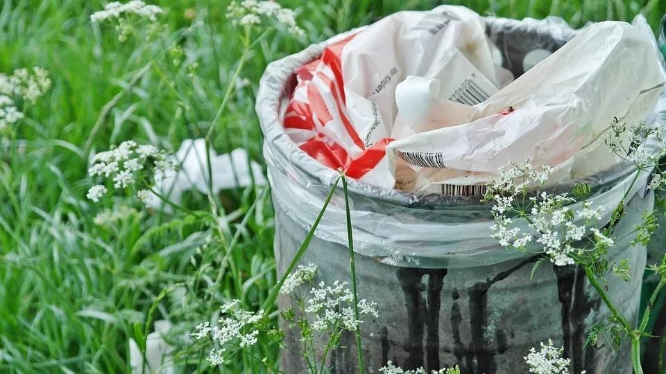 આ તર્જ પર પીએમ નરેન્દ્ર મોદીએ પણ સિંગલ યૂઝ પ્લાસ્ટિક પ્રતિબંધની વાત કરી છે. માનવામાં આવે છે કે, 2 ઑક્ટોબરથી 6 પ્રકારની વસ્તુઓ બેન થઈ શકે છે. જેમાં પ્લાસ્ટિકના ઉપયોગમાં વાર્ષિક લગભગ 10% સુધી અછત આવશે. જોકે, સરકાર આ સામાનના પ્રતિબંધ પર કેટલીક પ્રકારના ફાઈન અથવા પહેલા 6 મહિનાનો સમય આપવામાં આવશે જેથી લોકો વિકલ્પની વ્યવસ્થા કરી શકે.