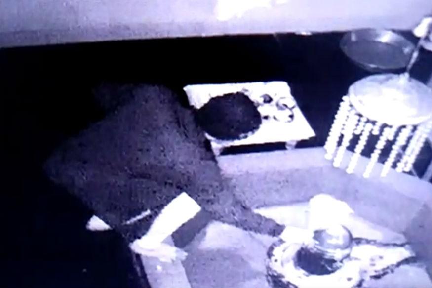 CCTVના દૃશ્યો મુજબ મોડી રાત્રે તસ્કરોએ મંદિરના મુખ્ય દરવાજાનું તાળું તોડી અંદર પ્રવેશ કર્યો હતો. જ્યાં તેમણે મંદિરમાં મૂકેલી દાન પેટી કોઈ સાધન વડે તોડી રોકડ રકમની ચોરી કરી ભાગી છૂટ્યા હતા.