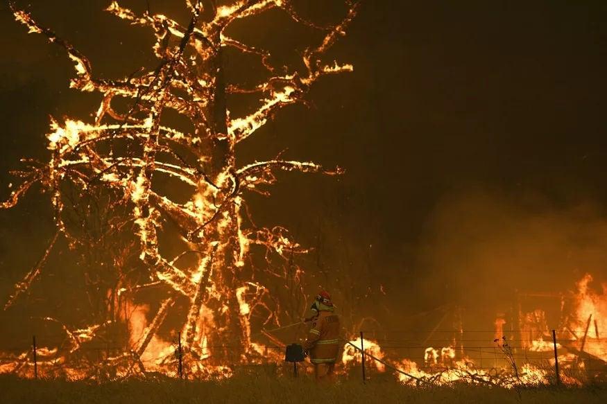 કંગારૂના બાળકના આવા દર્દનાક મોત જોઈને લોકોની આંખો ભરાઈ આવી. નોંધનીય છે કે, જંગલમાં લાગેલી આગના કારણે અત્યાર સુધી 18 લોકોનાં મોત થઈ ચૂક્યા છે. ચાર મહિનાનો સમય પસાર થયા બાદ પણ ઑસ્ટ્રેલિયાના જંગલોમાં લાગેલી આગ ખતમ નથી થઈ રહી.