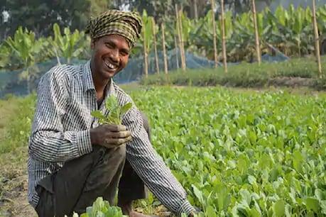 ખેડૂતો માટે ખુશખબર! આવક વધારવા માટે માટે કેન્દ્ર સરકારે લીધો બીજો મહત્વનો નિર્ણય
