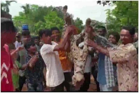 હૈવાનિયતની હદ! દીપડાના દાંત તોડી કરાવ્યું આ કામ, વાયરલ Video