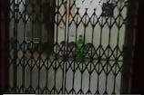 અમદાવાદ: Corona પોઝિટિવ મહિલાને Dog સાથે વોર્ડમાં બંધ કરી ગાયબ થઈ ગયો કર્મચારી