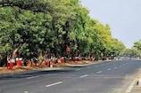 ગૃહમંત્રી અમિત શાહે ગાંધીનગર લોકસભા મત વિસ્તારમાં લીમડો, પીપળો, જાંબુ રોપવા અપીલ કરી