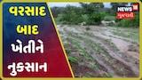 Video: રાજકોટમાં ભારે વરસાદમાં ખેતરોમાં પાક ધોવાયો, ખાખી જાળિયામાં નુકસાનીના દ્રશ્યો