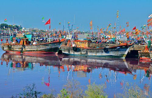 5 હજાર કરોડની થતી ફિશ સપ્લાયમાં ઘટાડો આવી 3700 કરોડની આસપાસ પહોંચી ગયો છે. ગુજરાત રાજ્યમાંથી પકડાતી 70 ટકા માછલીઓની ચીનમાં નિકાસ થાય છે. પરંતુ લોકડાઉન અને સરહદી વિવાદને કારણે હાલનાં સમયમાં નિકાસ 25 ટકા ઘટી ગઈ છે. તેવામાં ઓગષ્ટ માસથી શરૂ થતી માછીમારોની નવી સીઝન પડકારજનક બની જશે.