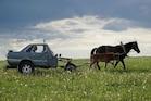 કમાલની Audi-ઘોડાગાડી, પેટ્રોલનો ખર્ચ બચાવી આ ખેડૂત લઈ રહ્યો છે લક્ઝરી કારની મઝા!