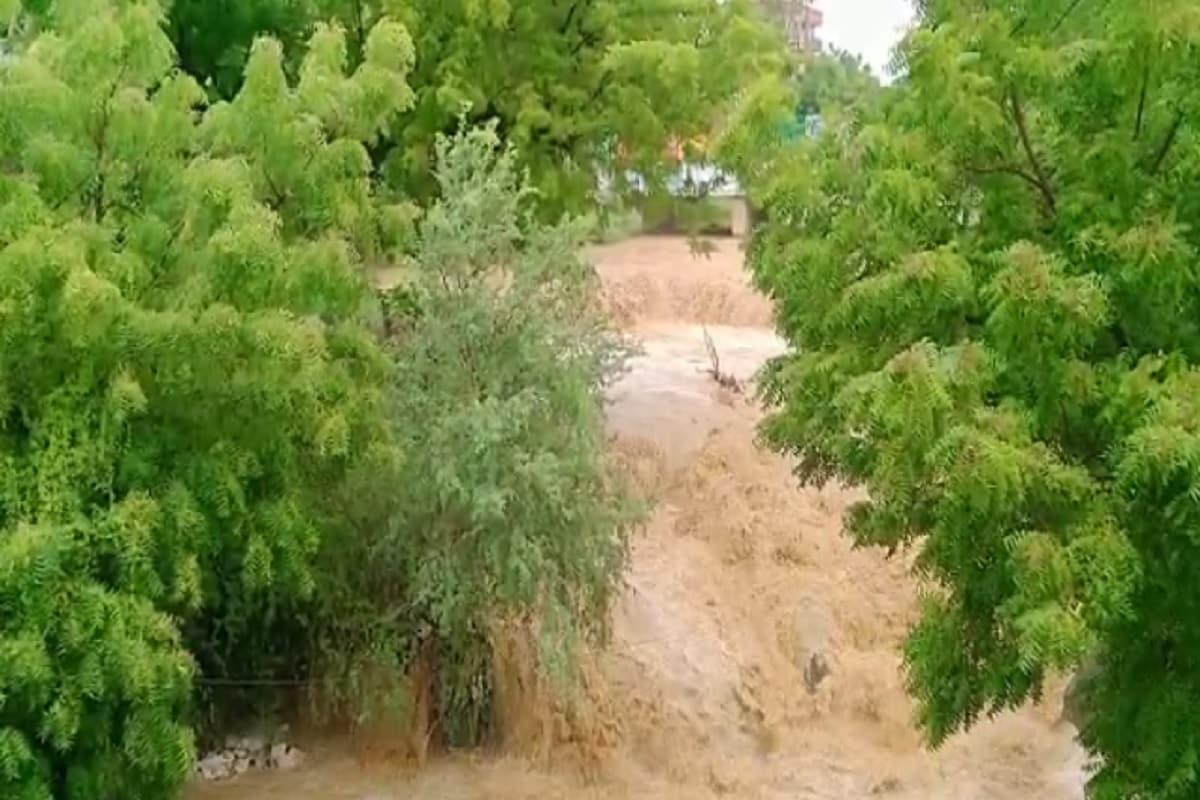 મુન્દ્રાની GIDCમાં પાણી ભરાતા લોકો લાકડાની પ્લાયની બોટ બનાવી પસાર થાય છે: સતત વરસી રહેલા વરસાદના કારણે મુન્દ્રાની GIDCમાં ભારે પાણી ભરાતા લોકો લાકડાની પ્લાયની બોટ બનાવી પસાર થઈ રહ્યા છે. વિસ્તારના ગોલ્ડન પાર્કમાં પાણીના પ્રવાહમાં કન્ટેનર તણાયો હતો. જીઆઈડીસીમાં ભારે પાણી ભરાતા બોટ બનાવી લોકો તરતા નજરે ચડ્યા હતા.