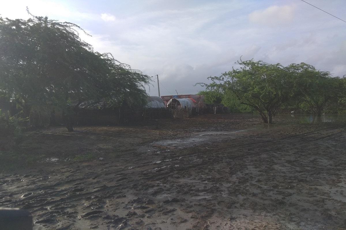અહીં ગામના દ્રશ્યો જોતા જ અંદાજ આવી ગયો કે જ્યારે પણ વરસાદ આવે ત્યારે અહીં ગામોમાં પાણી ભરાઈ જતા હશે. જ્યાં પાણીથી બચવા ગામ લોકોએ લાકડાના માયરા બનાવ્યા છે. જ્યારે પણ જળસ્તર વધે તો તેમાં બચીને રહી શકાય. વરસાદની સ્થિતિ અંગે ગામ લોકોને પૂછતાં તેઓએ જણાવ્યું કે અહીં આસપાસના પાંચ ગામમાં આવી સ્થિતિ છે. પાંચેય ગામોની અંદાજે 2 હજારની વસ્તી છે. જેને ઉંચાણ વાળી જગ્યાએ સ્થળાંતર કરી દેવાયું છે. અહીં વરસાદી પાણી ગામમાં આવી જાય છે પણ કોઈ જોવા સુદ્ધા આવતું નથી.