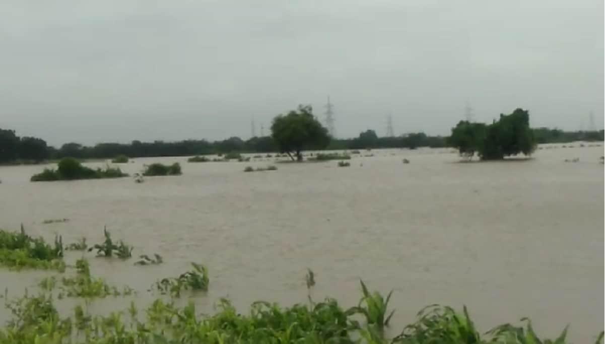 રાજ્યમાં છેલ્લા 24 કલાકમાં વરસેલા વરસાદનાં આંકડા પર નજર કરીએ તો, જામનગરનાં જોડિયામાં 13.52 ઇંચ વરસાદ ખાબક્યો છે. જ્યારે મહેસાણાના કડીમાં 13.12 ઇંચ, મોરબીનાં ટંકારામાં 10.8 ઇંચ વરસાદ નોંધાયો છે. સુરતનાં ઉમરપાડામાં 10.24 ઇંચ, મોરબીમાં 9.96 ઇંચ, મહેસાણાનાં બેતરાજીમા 8.96, પાટણનાં સરસ્વતીમાં 8.36 ઇંચ, જ્યારે કચ્છના અંજારમાં 7.96 ઇંચ વરસાદ નોંધાયો છે.