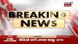 Video: Sabarkatha માં વાઘ દેખાવાની શક્યતા, Video અંગે DFO એ શરૂ કરી તપાસ