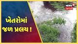 ગીરસોમનાથમાં વરસાદના કારણે ખેતરોમાં ઘુસ્યા પાણી, ખેડૂતોના પાકને ભારે નુકસાનની શક્યતા