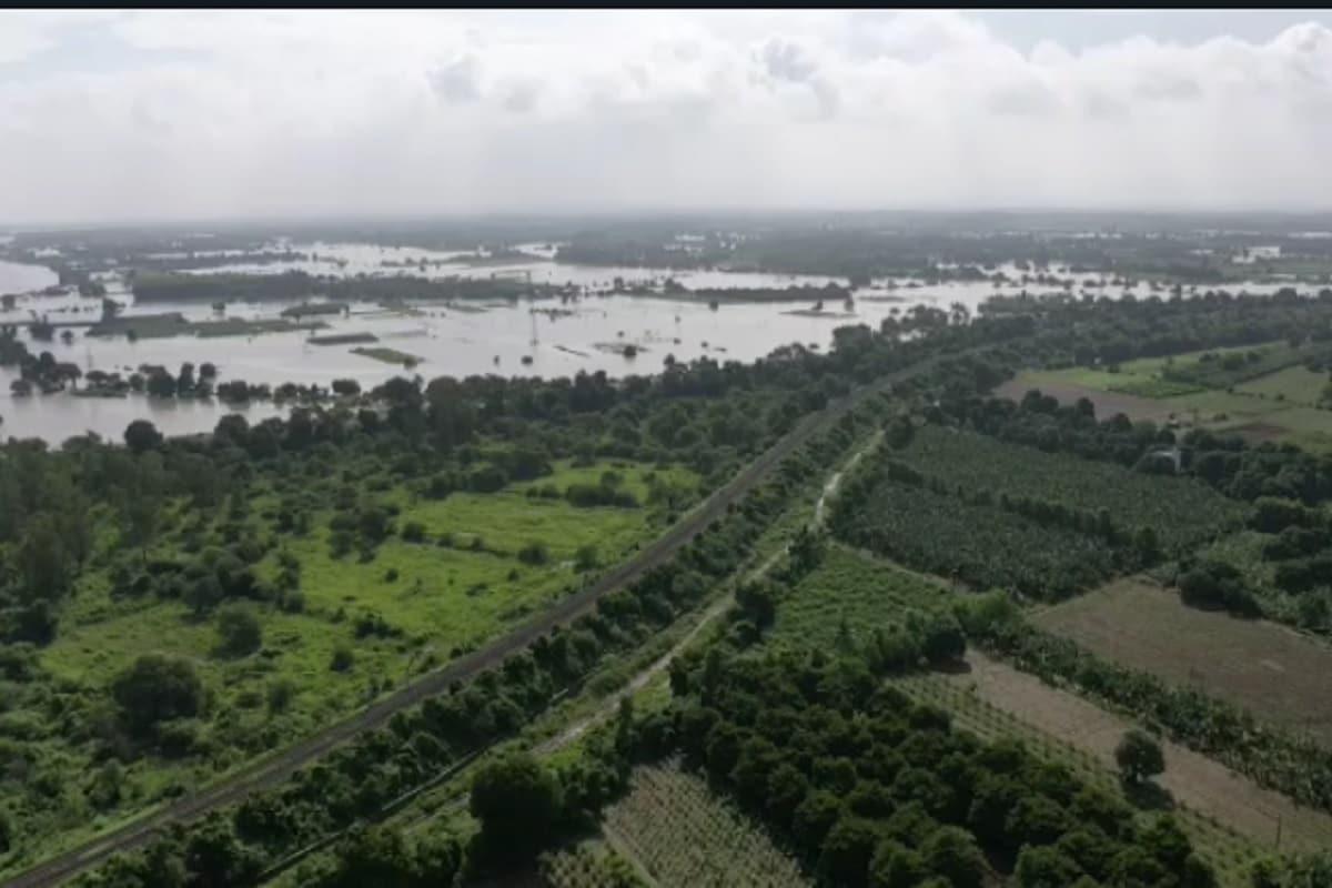 રાજ્યમાં મોસમનો સરેરાશ વરસાદ 121.05 ટકા થયો છે. જેમાં કચ્છ ઝોનમાં સૌથી વધુ 256.13 ટકા, સૌરાષ્ટ્રમાં 163.18 ટકા, દક્ષિણ ગુજરાતમાં 103.29 ટકા, ઉત્તર ગુજરાતમાં 104.65 ટકા અને પૂર્વ મધ્ય ગુજરાતમાં 88.57 ટકા સરેરાશ વરસાદ નોંધાયો છે.