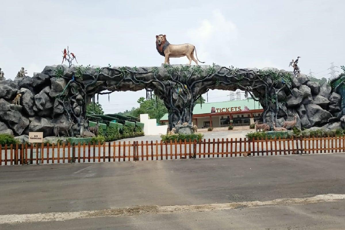 દિપક પટેલ, નર્મદા : દુનિયાની સૌથી ઊંચી પ્રતિમાં સ્ટેચ્યુ ઓફ યુનિટી (Statue of unity) નજીક પ્રવાસી માટે જંગલ સફારી પાર્ક (Jungle safari park) બનાવવામાં આવ્યું છે. જે 18 ફેબ્રુઆરી 2020ના રોજ પ્રવાસીઓ માટે ખુલ્લું મુકવામાં આવ્યું હતું. કોરોના કાળમાં છ મહીનાથી બંધ કરવામાં આવ્યું હતું પરંતુ હવે કોરોના નીતિ નિયમો સાથે એક ઓક્ટોબર,2020થી પુનઃ શરૂ કરવામાં આવશે. 375 એકરમાં ફેલાયેલ જંગલ સફારી પાર્કમાં 62 જાતનાં કુલ 1000 પ્રાણી પક્ષીઓનો સમાવેશ થયો છે.