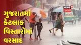 Narmada ના સાગબારા અને કેટલાક વિસ્તારોમાં ગાજવીજ સાથે વરસાદનું આગમન