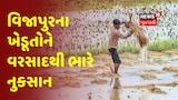 Mehsana: વિજાપુર તાલુકામાં વરસાદથી ખેડૂતોના બાજરી, મગફળી અને કપાસના પાકને ભારે નુકસાન