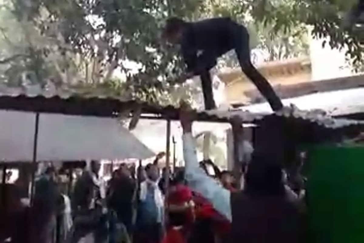 ચાર લાખ રૂપિયા ભરેલી બેગ લૂંટી ગયો વાંદરો, ઝાડ પર ચડી કરવા લાગ્યો નોટોનો વરસાદ, જુઓ VIDEO