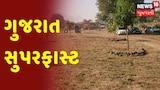 Gujarat News Update : CMએ નવી કૃષિલક્ષી ખેતી પોલીસીની કરી જાહેરાત
