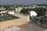 ગુજરાતના આ વિસ્તારોમાં 14 જાન્યુઆરીના દિવસે નથી ઉડાવાતી પતંગ, કારણ જાણીને બોલી ઉઠ્શો વાહ