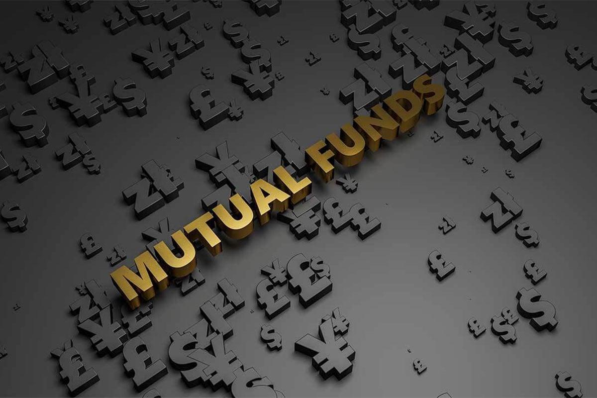 Franklin India Flexi Cap Fund(G) : જાન્યુઆરી 2021માં આ યોજનામાં 3.19 ટકાનો વધારો થયો હતો. 11 ફેબ્રુઆરી સુધીમાં તેની નેટ એસેટ વેલ્યુ (ANV) રૂ. 787.18 હતી. આ ફંડનું ભારતીય શેરોમાં 95.18% રોકાણ છે, તેમાંથી 68.28% લાર્જકેપમાં છે, મિડકેપ્સમાં 10.92% અને સ્મોલકેપ શેરોમાં 6.34% છે.