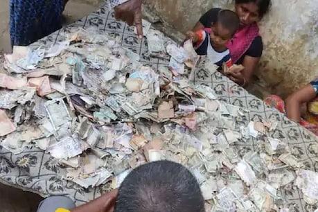 સપનાનું ઘર બાંધવા માટે ગરીબ પરિવારે ભેગા કર્યા હતા 5 લાખ રૂપિયા, ઉધઈ કરી ગઈ ચટ