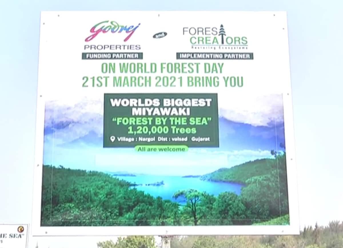 સાથે જે એનજીઓ વૃક્ષારોપણના નિષ્ણાતને સાથે રાખી અને દરિયાકિનારે વિશ્વના સૌથી મોટા જંગલ પ્રોજેક્ટ બનાવી રહી છે. તે સામાજિક સંસ્થા દ્વારા પણ આ દરિયા કિનારે ઊભા થનારા વિશ્વના સૌથી મોટા ગાઢ જંગલના પ્રોજેક્ટથી શું અને કેવા ફાયદાઓ થશે તે વિશે પણ લોકોને માહિતગાર કર્યા હતા.