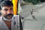 જૂનાગઢ: ત્રણ હજાર રૂપિયા માટે યુવકની હત્યા, કુહાડીના 17થી વધારે ઘા ઝીંકી દીધા, Live CCTV