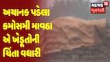 Jamnagar | અચાનક પડેલા કમોસમી માવઠા એ ખેડૂતોની ચિંતા વધારી