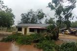 Tauktae અસર: રાજ્યના 221 જિલ્લાના 84 તાલુકામાં વરસાદ, છ તાલુકામાં એક ઇંચ જેટલો વરસાદ